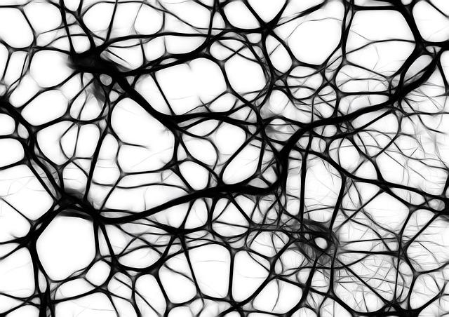 strata mozgových buniek.jpg