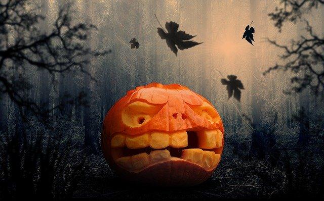 Oranžová cuketa vyrezaná na halloween v tmavom lese.jpg